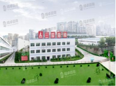 重庆三爱海陵实业_6S管理咨询等案例